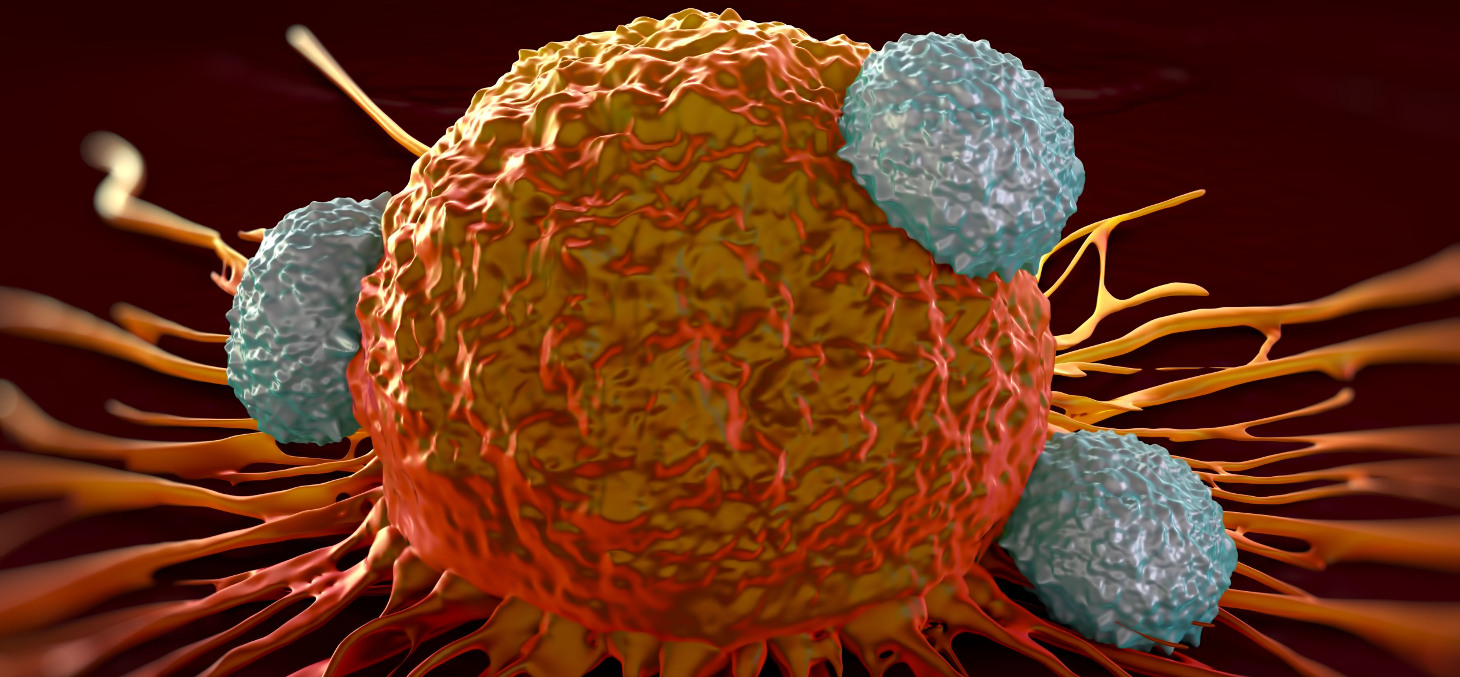 T cells attacking a cancer cell